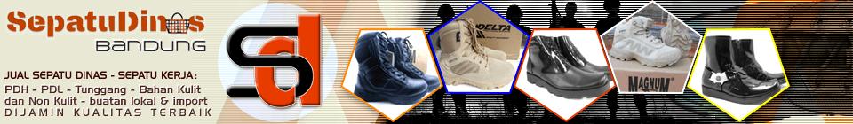 Sepatu Dinas